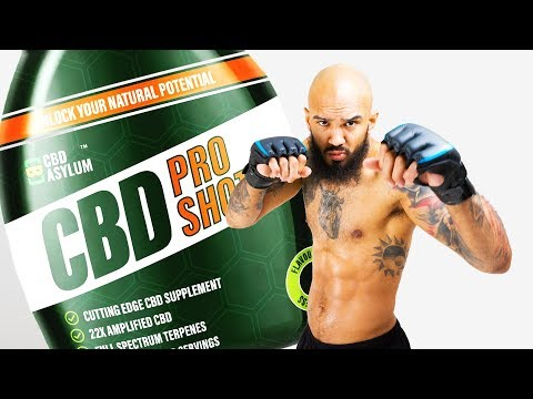 MMA Conditioning: Alex Montagnani Reveals The Benefits of CBD